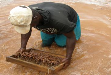 Sem economia de mercado não haverá diversificação da economia em Angola