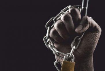 """""""É uma clara perseguição à liberdade de imprensa e de expressão no Namibe"""", diz Armando Chicoca"""